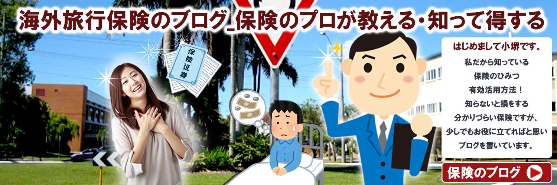 海外旅行保険のブログ