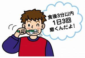 歯磨きは、食後30分以上経ってからするのが良いそうです。