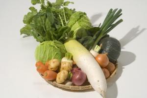 冬野菜で健康効果のある食品は?