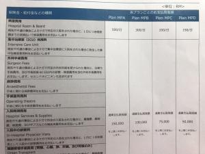 日系大手保険会社から、ビザ取得に有効な医療保険を販売しています。